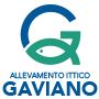 GAVIANO_logo