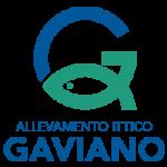 GAVIANO_logo_retina