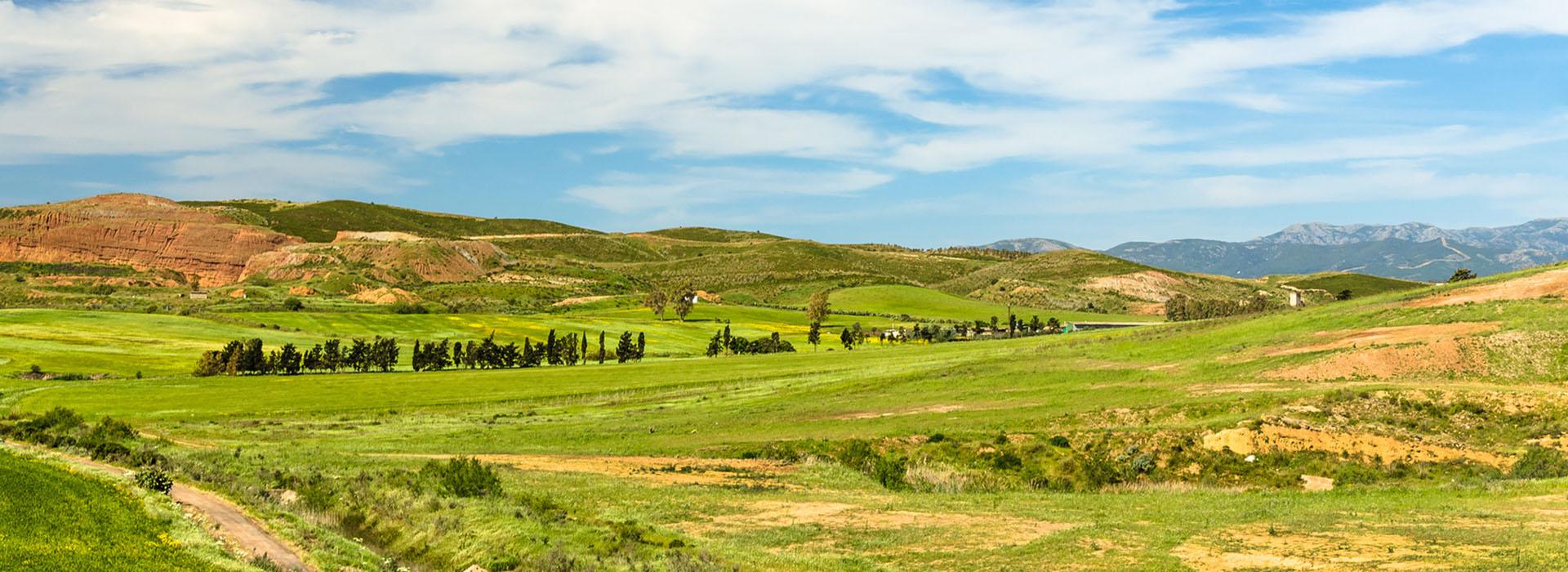 Sardegna, campagna vicino a Ussana